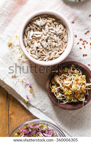 Colourful and healthy crunchy mixed seeds and various sprouts. Bean sprouts, sunflower seeds. - stock photo