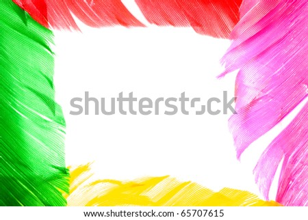 colourful bird feather frame background