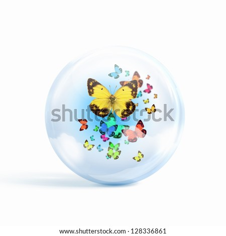 colourful butterflies flying inside a glass sphere - stock photo