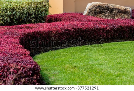 Colourful Flower and Winding Grass Pathway in  Garden - stock photo