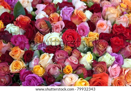 Colourful Roses At The Local Market - stock photo