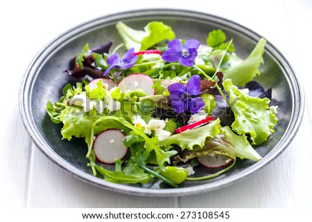 Colourful salad with radish, broad beans and violets - stock photo