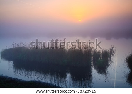 Colourful sunrise with morning dew at a lake - stock photo