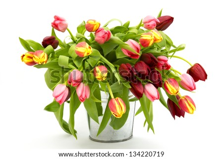 colourful tulips in a bucket