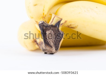 Colse up bunch of fresh banana. Template for food and drink, education, healthcare and beauty