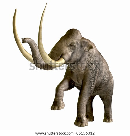 Columbian Mammoth 01 - The Columbian Mammoth is one of an extinct megafauna beasts from the Pleistocene Period of Earths history. Its fossils have been discovered in North and Middle America. - stock photo