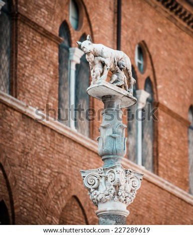 Column with she-wolf with Romulus and Remus in front of the Duomo, Siena, Italy - stock photo