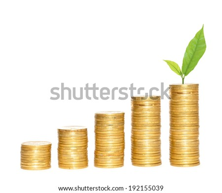 columns of gold coins and green plant over white background - stock photo