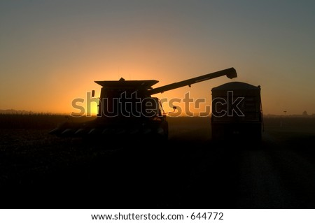 combine filling truck at sunset - stock photo