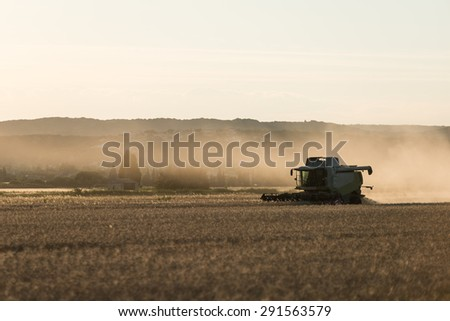 combine harvester agriculture machine harvesting golden ripe wheat field at sunset - stock photo