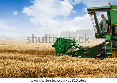 Combine harvester harvest ripe wheat on a farm - stock photo
