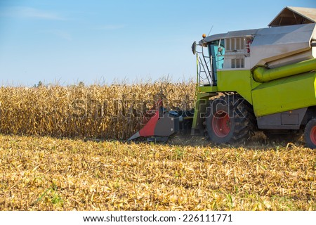 Combine harvester harvesting corn maize grains. - stock photo