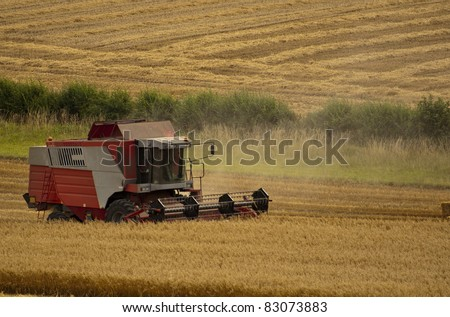 Combine Harvester Harvesting wheat in late summer