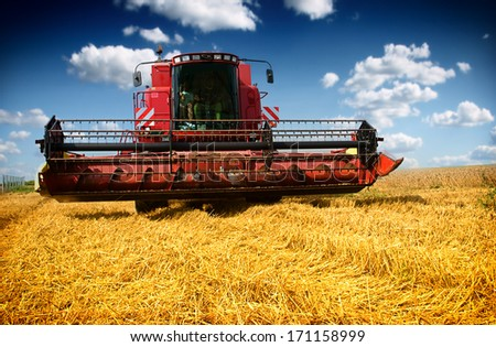 Combine harvester harvesting wheat on sunny summer day - stock photo