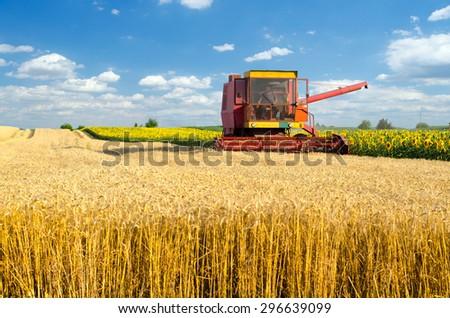 Combine harvester harvesting wheat on sunny summer day. - stock photo