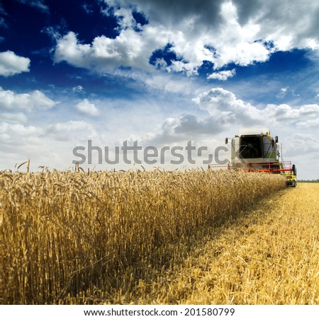 Combine harvester in action on wheat field - stock photo