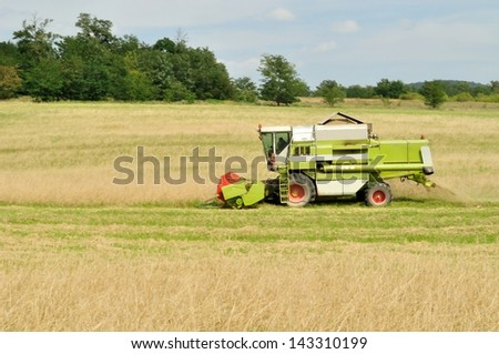 Combine harvester in the wheat field during harvesting - stock photo