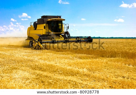 combine harvester on a wheat field with blue sky - stock photo