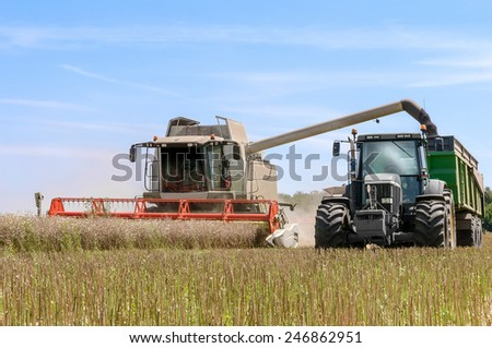 combine harvester overturning cereals in a tractor truck - stock photo