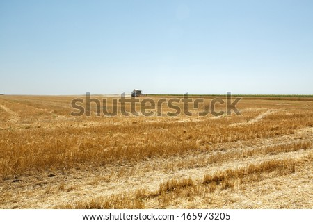 Combine harvester working on sunny summer day.