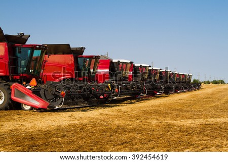 Combine harvesters, in a wheat field ready for harvest