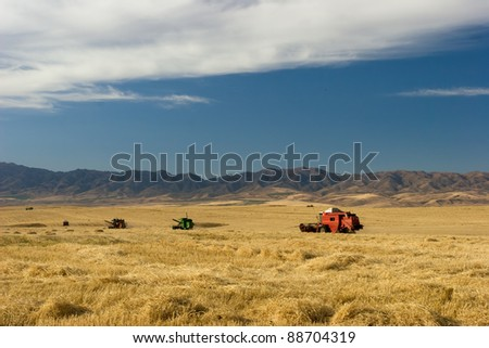Combine harvesters working in a field - stock photo