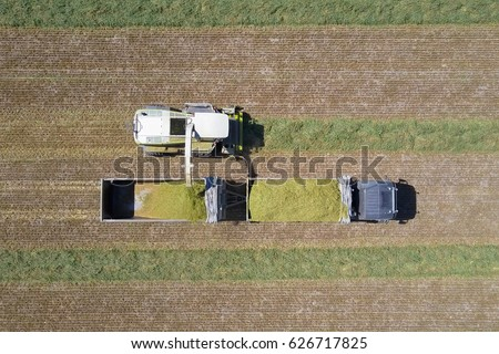 Combine harvesting a green field and unloads wheat onto a double trailer truck - Top down aerial image