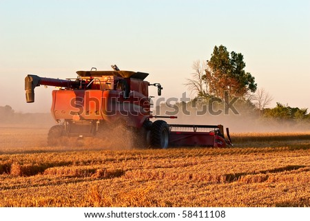 Combine harvesting crops at sunset or sunrise, dust and debris from harvesting add to the motion and activity at hand.