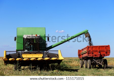 Combine harvesting in a sunflower field in Serbia - stock photo
