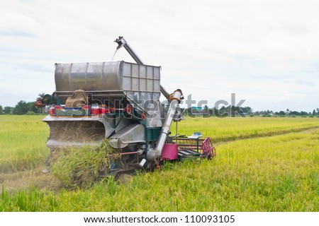 Combine harvesting rice - stock photo