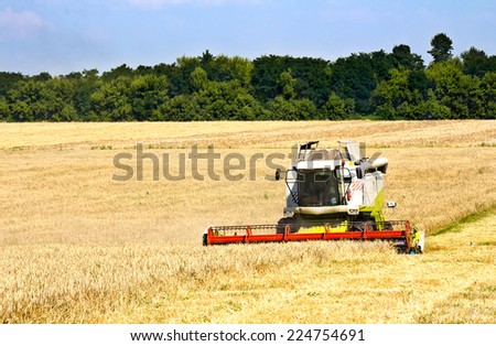 Combine harvesting wheat. Ukraine - stock photo