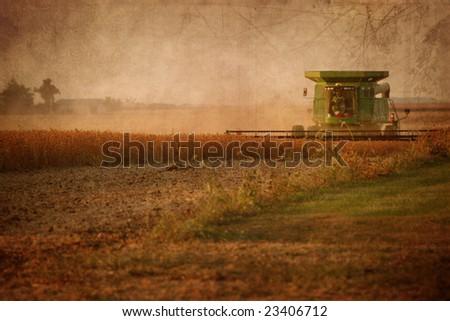 Combine in Soy Bean Field - stock photo