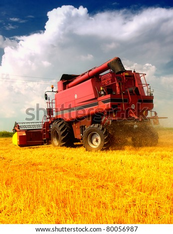 Combine working on a wheat field - stock photo