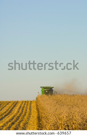 combining corn - stock photo