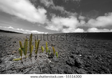 Come back to life - stock photo