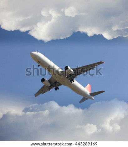 Comerical airplane landing with cloud
