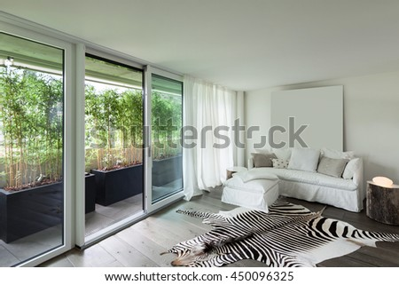 Comfortable living room, leather zebra on the floor, white walls