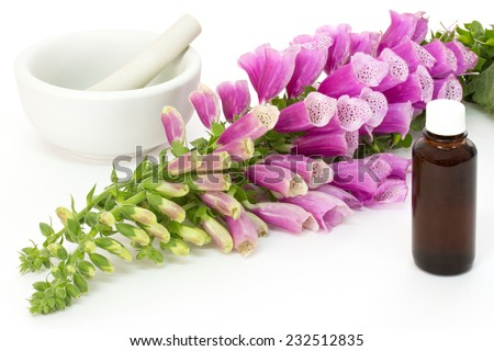 Common foxglove with mortar, pestle and medicine bottle on white background - stock photo