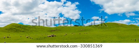 Common view in the New Zealand - hills covered by green grass with herds of sheep. Panoramic photo - stock photo