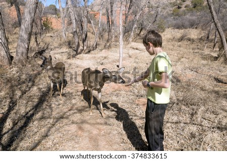 Community Child and white-tailed deer in  the   Palo Duro Canyon State Park, Texas, USA - stock photo
