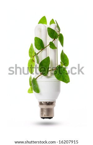 Compact fluorescent light bulb with green plant - stock photo