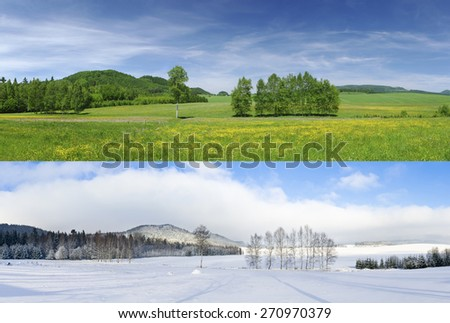 Comparison of 2 seasons - winter and summer - stock photo