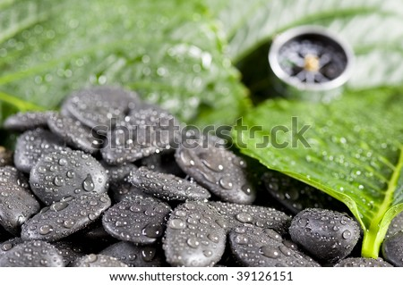 Compass and green leaf cover water drop - stock photo