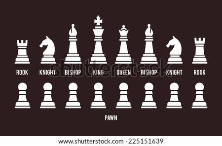 Complete set of all sixteen chess pieces arranged in two rows with the pawns below  white silhouette icons on black with each piece named and identified