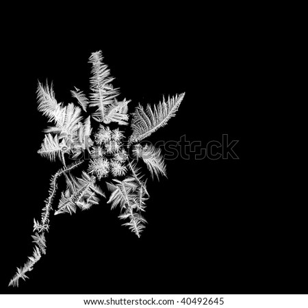 Composite flower made of several real frosted windows - stock photo