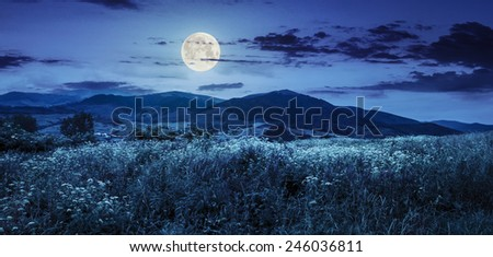 composite mountain landscape. wild flowers on meadow in mountains at night in full moon light - stock photo