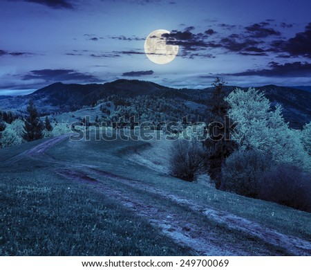 composite mountain landscape with  road on hillside meadow few fir trees and forest  on both sides of the road at night in full moon light - stock photo