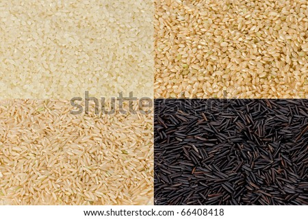 Composite of sushi rice, short-grained brown rice, long-grained brown rice, and wild rice. - stock photo