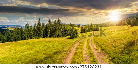 composite panoramic image mountain landscape.  curve path through the meadow on hillside near coniferous forest in sunset light - stock photo