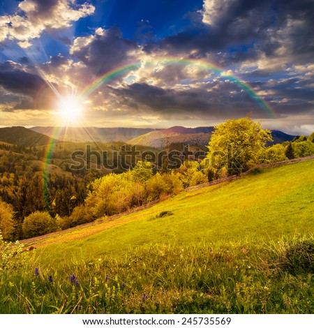 composite rural landscape. fence near the meadow and trees on the hillside. forest in fog on the mountain top in sunset light with rainbow - stock photo